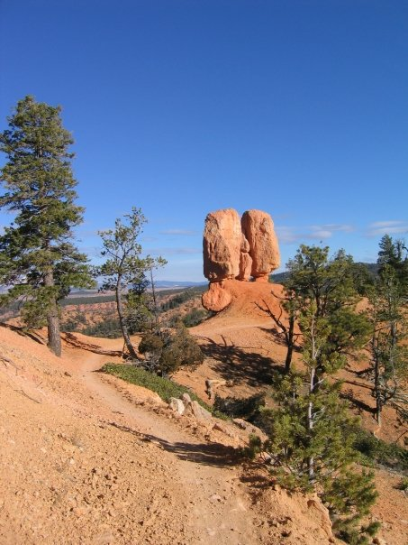 """I call this """"The Balls"""" of Bryce Canyon!"""